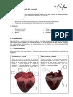Disección del Corazón