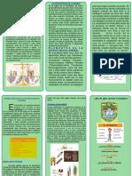 TRIPTICO SOBRE LA ESTRUCTURA DE LA MORAL2017.pdf