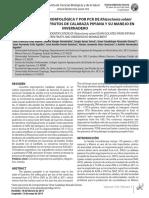 Articulo 3 (7) Biotecnia