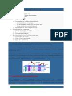Snv-biologie Cellulaire-les Membranes Cellulaires