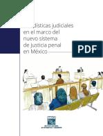 ESTADISTICAS JUDICIALES NUEVO SISTEMA PENAL MEXICO.pdf
