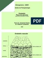Fisiopatologia de La Ateromatosis