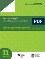 Dermatologia Pautas Basicas Para Su Aprendizaje 2017