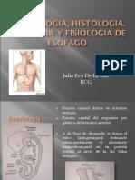 20110413 Embriologia Histologia Anatomia y Fisiologia De
