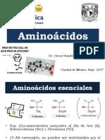 Amino Ácid Os