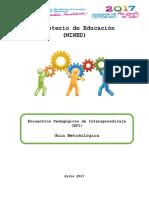 Guía Metodologica EPI
