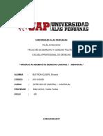 Trabajo Academico de Derecho Laboral i Individual