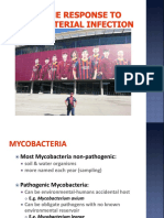 Immune Response to Mycobacteral Infection (Copy)