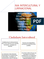 Cuidadania Intercultural y Plurinacional (1)