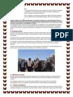 Productos Tecnologicos Propios de Bolivia