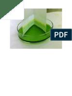 Cromatografia de Una Planta
