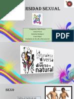 Presentación Diversidad Sexual