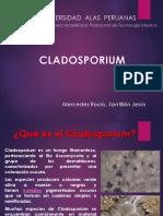 presentacion CLADOSPORIUM
