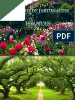 Glossriodejardinagem Plantas Rvores 120203175240 Phpapp02