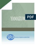 Yamazumi.pdf