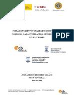 TESIS Jose Antonio Benedico.pdf