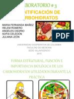 Laboratorio importancia de los carbohidratos