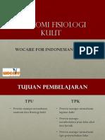 01 Anatomi Kulit 2014-2015