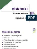 Neurofisiologia II