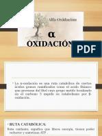 alfa-oxidacion-y-cetogene.pptx