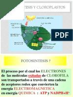 Fotosintesis y Cloroplastos.