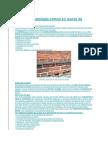 Defectos y patología común en muros de mampostería.docx