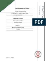 Reporte_de_practica_-_PERIODICIDAD_QUIMI.docx