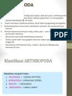 Bab 8 Arthropoda