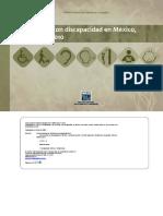 Estadistica Las Personas Con Discapacidad en Mexico a 2010