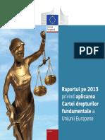 Raportul Pe 2013 Privind Aplicarea CDF