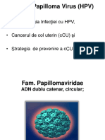 HPV R.ppt