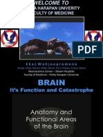 BRAIN, it's function and catastrophe.ppt