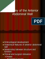 Anatomia Peretelui Abdominal