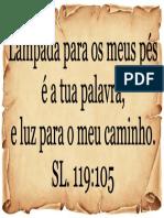Versiculo Dia Da Biblia 02