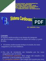 Sistema cardiovascular PDF