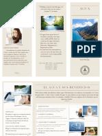 Triptico Estilo de Vida Saludable PDF