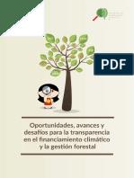 Oportunidades, Avances y Desafios Para La Transparencia en El Financiamiento en El Cambio Climático Para La Gestión Ambiental