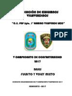 Bases Campeonato 2017 (1)