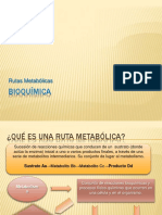 rutasmetabolicas-091122090640-phpapp01.pdf