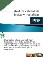 controldecalidadparafrutasyhortalizas-111128190000-phpapp01.pdf