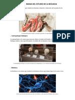 Anatomía Ramas de La Biologia