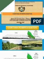 CORTINA ROMPEVIENTOS DIAPOSITIVA.pptx