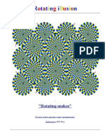 Rotating illusions.pdf