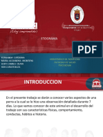Diapositivas Etograma