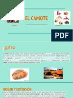 EL CAMOTE