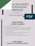 Aula - Prova Pericial - Prof. Camila Spmarques 2017