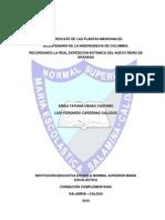 Estudios de Clase Anexos Al Proyecto Investigativo