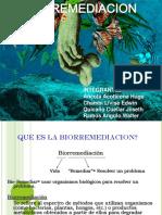 1 biorremedacion.ppt