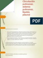Circulación Pulmonar, Edema Pulmonar, Líquido Pleural
