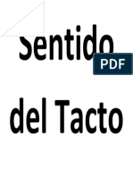 Sentido Del Tacto